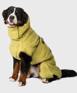 Siccaro dog coat